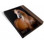 Füzetbox A/5 Geo Horse - fekete lovas