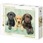 Clementoni Labrador kiskutyák 1000 darabos puzzle